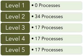 Level-5-CMMC-processes